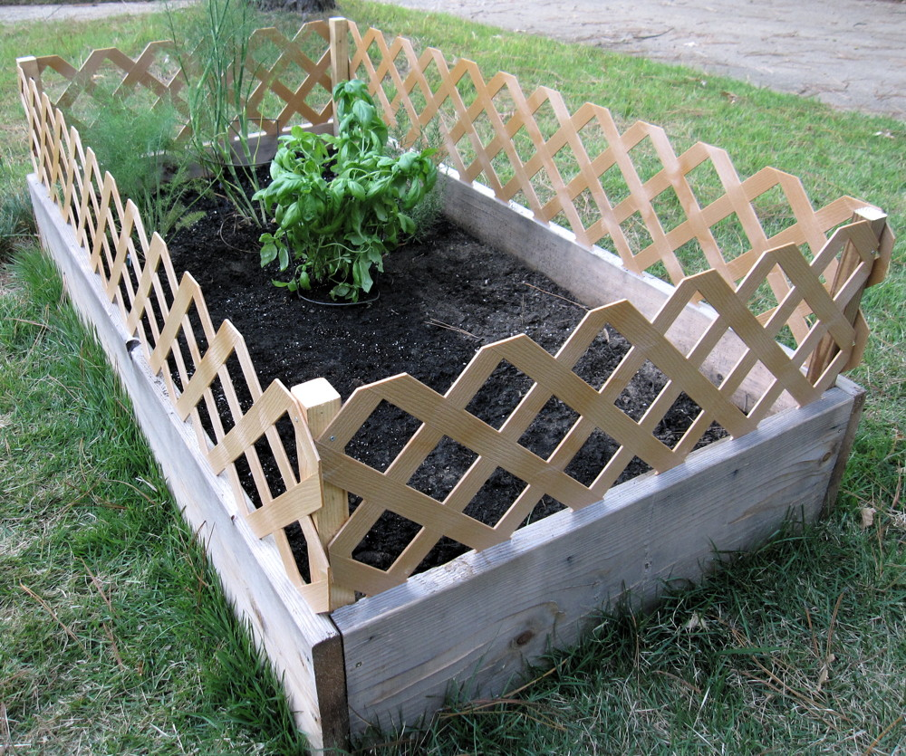 Raised Garden Fencing Ideas Photograph Does Your Scurrilou